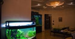 Наблюдение за  аквариумными рыбками всегда приятно и действует успокаивающе.