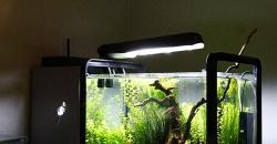 Нано аквариум 17л рабочем столе