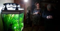 Настройка  камеры GoPro для подводной съёмки аквариума