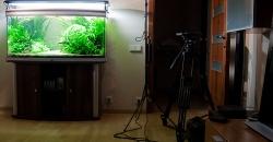 Съемка аквариума требует подготовки