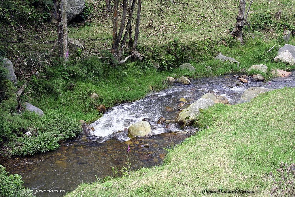 Рио Сабанетта, один из многочисленных притоков Магдалены