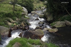 Рио Сабанетта, приток Магдалены