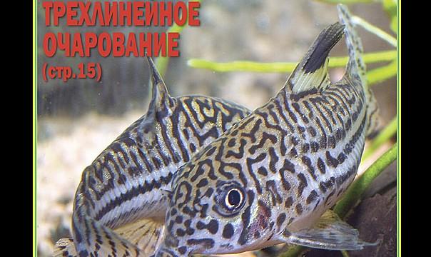 "журнал ""Аквариум"" №1 2012г"
