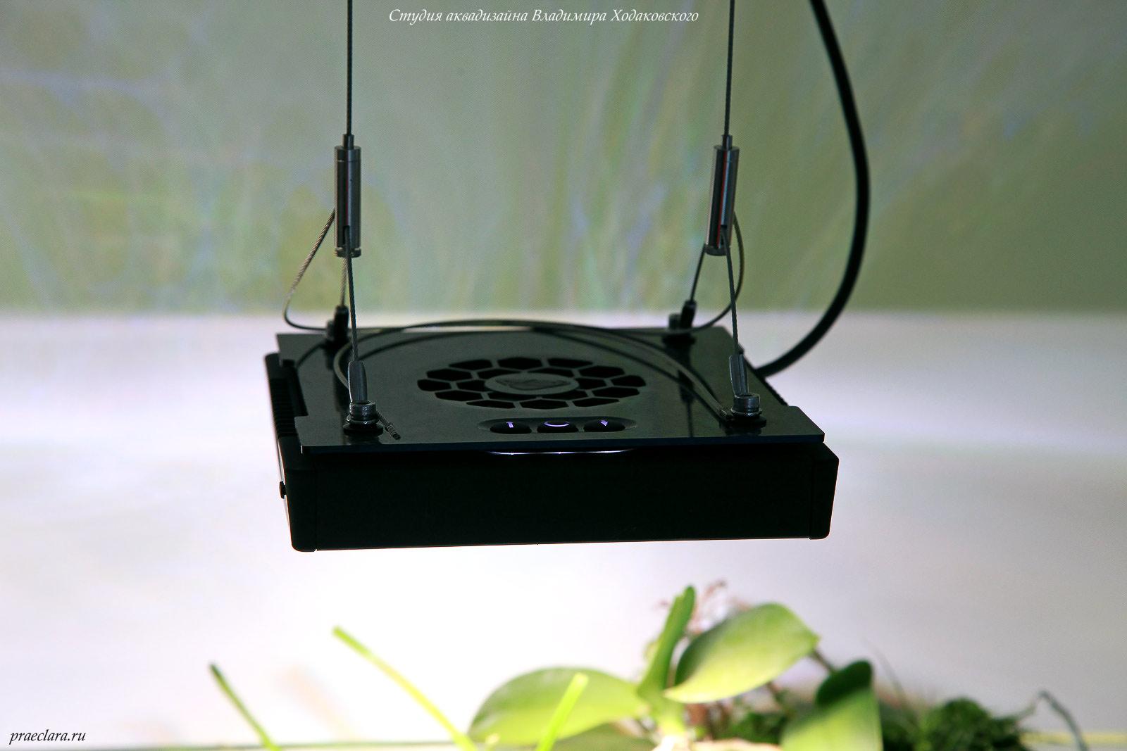 Светодиодные светильники в растительном аквариуме: в поисках идеала