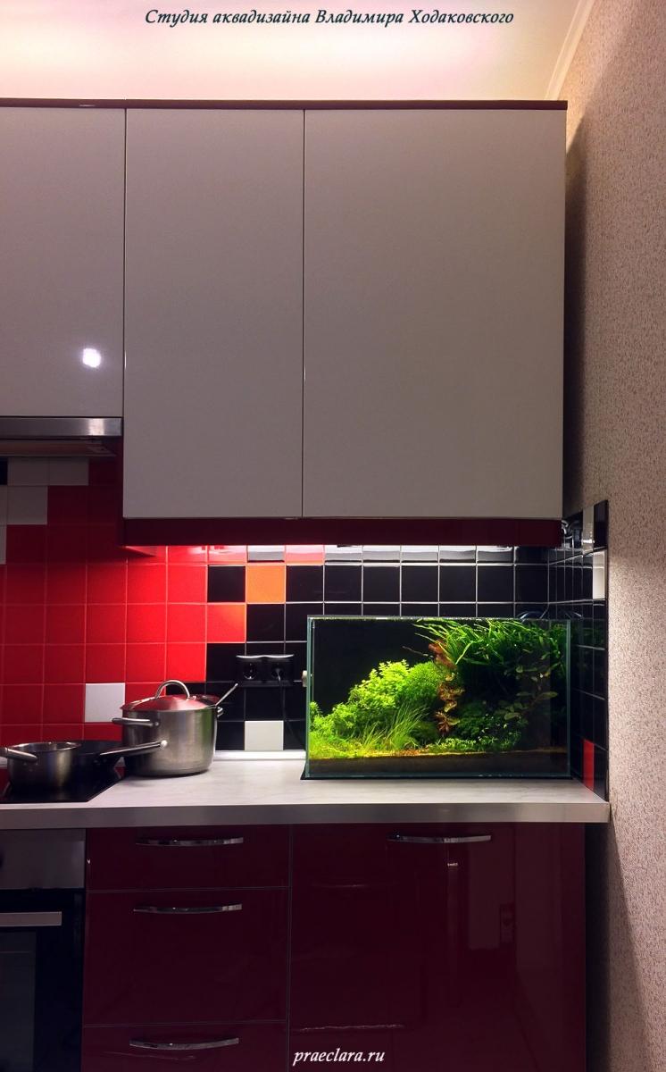 Аквариум 60л на кухне