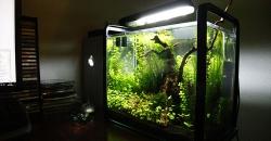 Нано-аквариум в интерьере